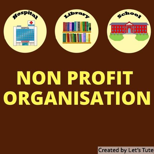 Accounts  Non-Profit Organisations