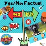 Yes/No Factual {Real Photos}