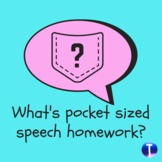 What's Pocket Sized Homework?