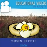 Biology Life Cycles: Chicken Life Cycle Video + Activities Kit
