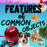 Features of Common Objects