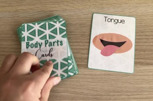 BODY PARTS Flash Cards - PERFECT for ABA Therapy programs