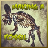 The Fossilization of Trixi Triceratops - Video Story